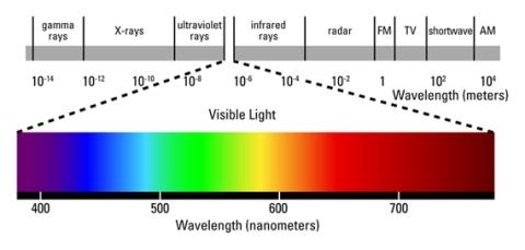 Retrieved from http://www.ledgrowlight-hydro.com/ledlights-blog/wp-content/uploads/2011/05/spectrum.jpg